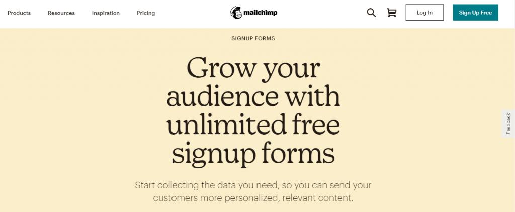 Mailchimp lead generation form screenshot.